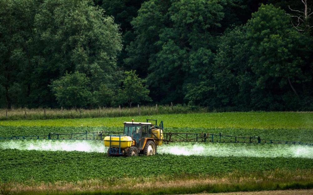 Glyphosate, Commission européenne, RoundUp, herbicide cancérigène, Monsanto