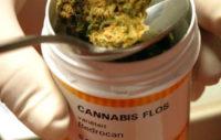 Cannabis médical, France