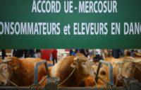 Mercosur, UE, agriculture
